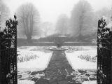 The Rose Garden by Vivian BATH
