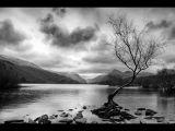 Watching Llyn Padarn by Stephen Lawton