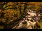 Afon Lledr by Tim MCANDREW