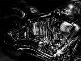 Easy Rider by Tony Hewitt